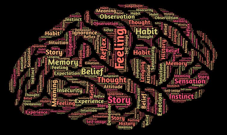 中考高考建议:每天负累过重的大脑究竟需要哪些营养?